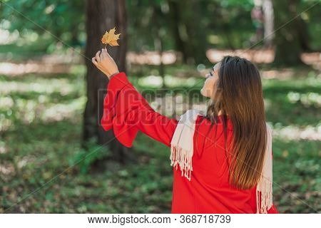 Its The Little Things That Make Life Better. Rear View Of Girl In Park, Raising Up An Autumn Leaf An