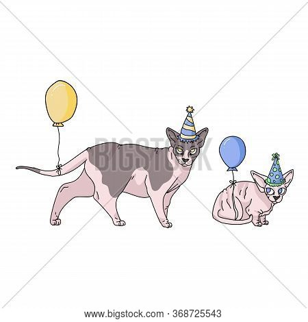 Cute Cartoon Sphynx Cat And Kitten With Party Hat Vector Clipart. Pedigree Exotic Breed For Cat Love