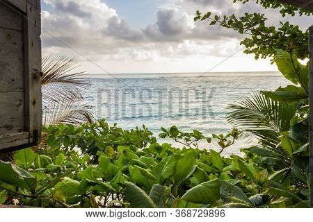 view from window of wooden hut on lush vegetation and beach on Caribbean Sea Jamaica