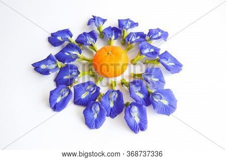 Butterfly Pea Flower And Oranges On White Background