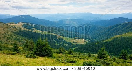 Summer Landscape Of Valley In Mountains. Panoramic View. Trees And Green Meadows On Rolling Hills. B