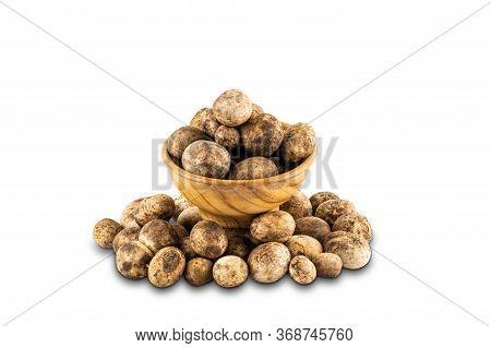 Mushroom Hygroscopic Earthstar Or Barometer Earthstar Or False Earthstar In A Wooden Bowl On White B