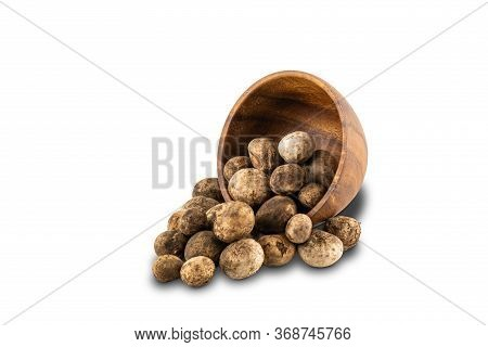 Mushroom Hygroscopic Earthstar Or False Earthstar In Wooden Bowl On White Background With Clipping P