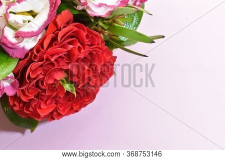Flowers Background. Beautiful Floral Wallpaper. Gift Card. Floral Headpiece. Exotic Flowers Closeup.