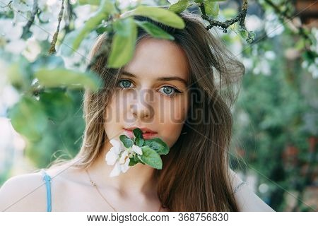 Beautiful Young Girl In A Blue Dress In A Blooming Apple Orchard. Blooming Apple Trees With White Fl