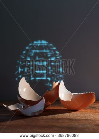 An Eggshell And A Hologram Of An Entire Egg. The Cyberpunk Concept. Life Extension Science, Digital