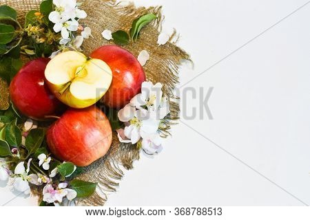 Ripe Red Apples And An Apple Sliced in Two With Flowers Of Apple Trees Lie On A Napkin On A White