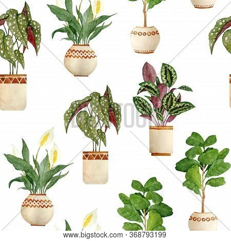 Watercolor Hand Drawn Seamless Pattern Illsutration With Houseplants In Brown Clay Terra Cotta Pots.