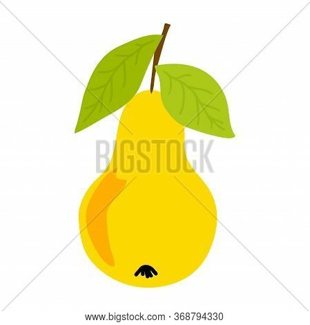 Vector Illustration With Isolated Yellow Sweet Juice Pear On White Background For Decoration Design.