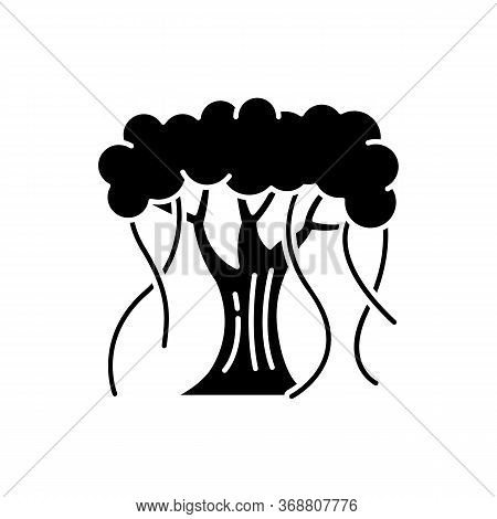 Indian Banyan Black Glyph Icon. National Indian Evergreen Tree With Wide Crown. Symbol Of Eternal Li