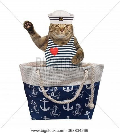 The Beige Cat In Seaman Clothing Is Sitting In A Bag And Waving His Paw. White Background. Isolated.
