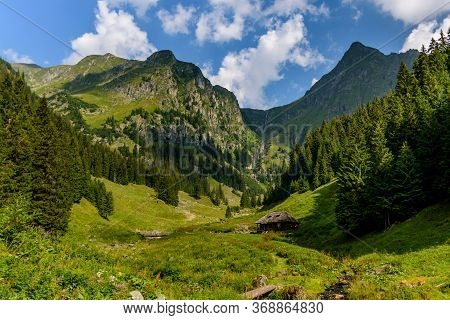 Lush Green And Colorful Natural View From Valea Rea (bad Valley), Fagaras Mountain