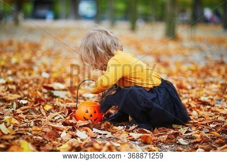 Adorable Toddler Girl In Orange T-shirt And Black Tutu Playing With Colorful Pumpkins And Orange Buc