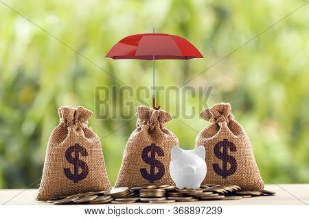 Group Coins And Us Dollar Bag, Piggy Bank Under The Red Umbrella. Concept Risk Protecting, Wealth Ma