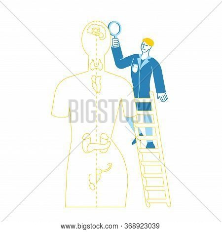 Doctor Character Endocrinologist In Medical Robe Stand On Ladder Examine Patient With Hormone Disbal