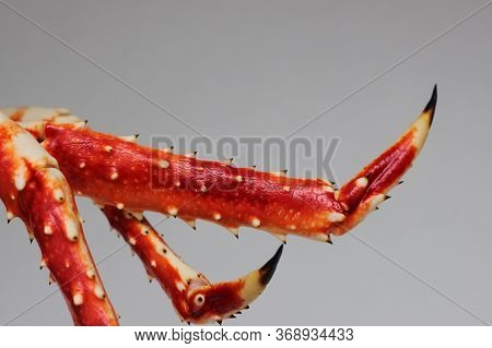 Crab Legs. Part Of The Crab. Boiled Crab. Delicious Seafood.