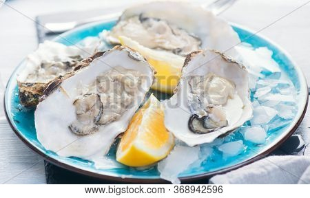 Fresh Oysters close-up on blue plate, served table with oysters, lemon and ice. Healthy sea food. Fresh Oyster dinner in restaurant. Gourmet food concept