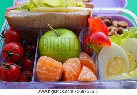 Lilac Lunch Box With Compartments In Which-useful Food For Lunch And Snack: Sandwich, Vegetables, Fr