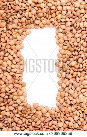 Lentils Close-up. Green Lentils. Delicious Lentils. Lentil Seeds