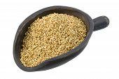Scoop Of Sesame Seeds