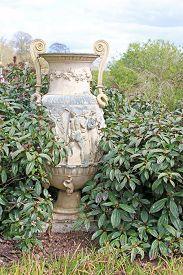 Stone Urn In A Garden Between Plants