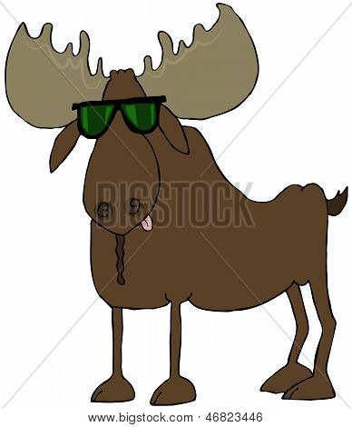 This illustration depicts a bull moose wearing sunglasses. poster