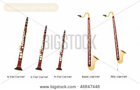 Various Kind Of Clarinets Isolated On White Background