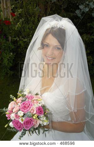 Veiledbride