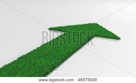 Grass Carpet With Arrow