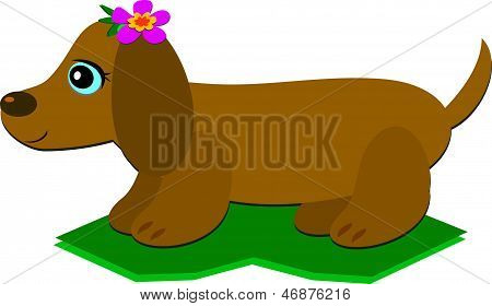 Dachshund Dog with a Flower