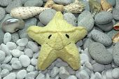 a smiling starfish poster