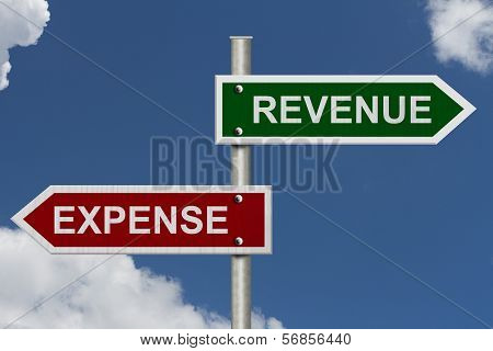 Revenue Versus Expense