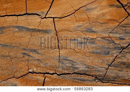 lanzarote spain abstract texture of a broke dry sand and lichens poster