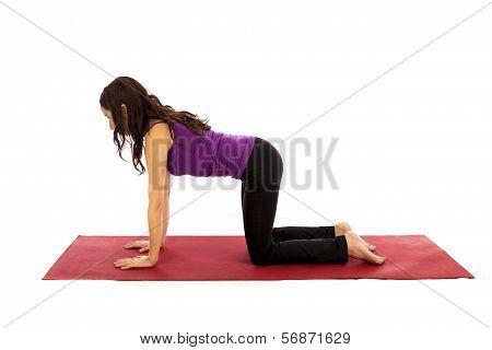 Cow Yoga Pose