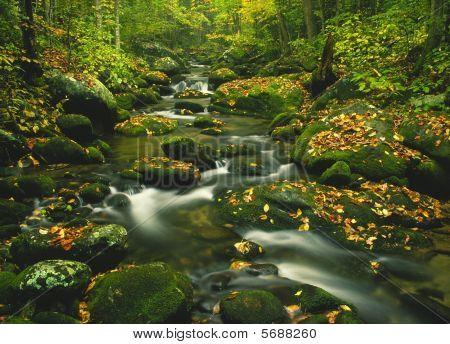Hidden mountain creek