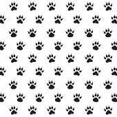 Traces of Dog  Black and White Seamless Background poster