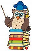 Wise owl teacher on various books - vector illustration. poster