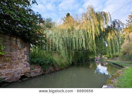 Canal Passing Under A Weeping Willow In English Countryside