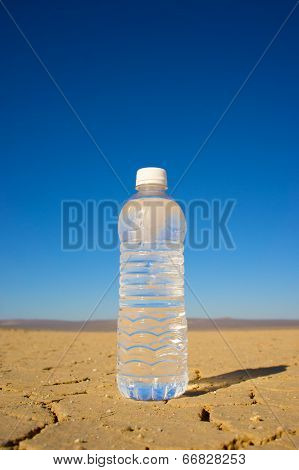 Vertical Water Bottle In Desert