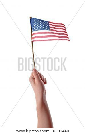 Hand Holding Usa Flag