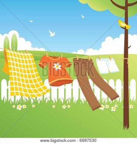 Clothes Line - Garden