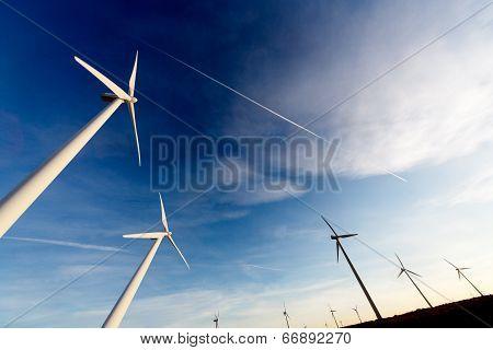 Eolic park. wind mills
