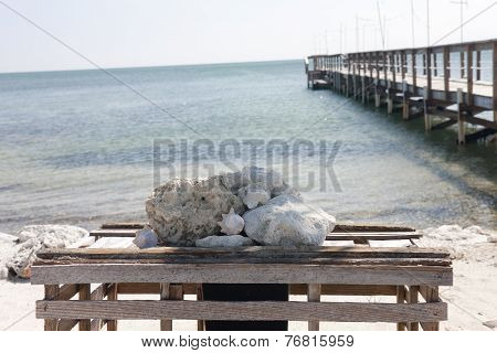 Pier, View And Ocean