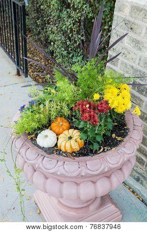 Flower Pot And Pumpkin