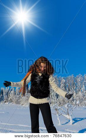 Near Snowy Trees Midwinter Sunshine