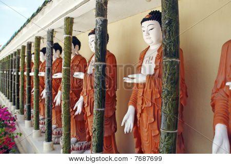 A row of Buddha.