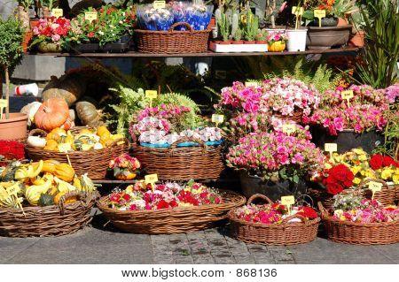 Street garden shop