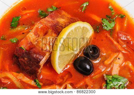 Russian and Ukrainian soup solyanka AKA saltwort or barilla