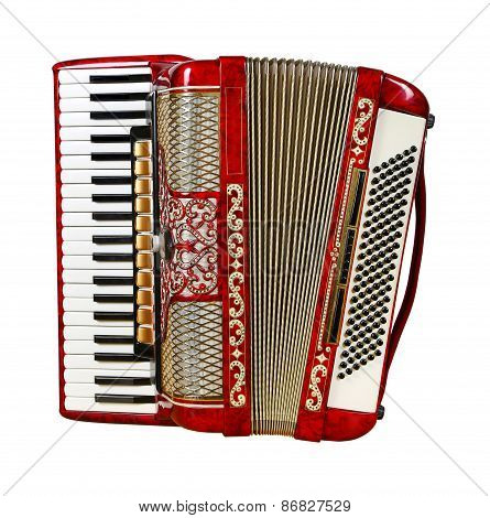 Accordion, Front View