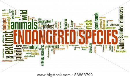 Endangered species - environment issues and concepts word cloud illustration. Word collage concept. poster
